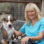 Spicewood-Spring-Animal-Hospital-Austin-Veterinarian-Terri-Wagner-DVM-thumb