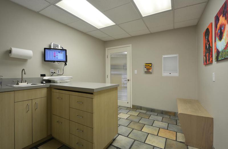 Spicewood Springs Animal Hospital examination room