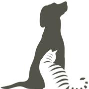 spicewood-springs-animal-hospital-austin-veterinarian