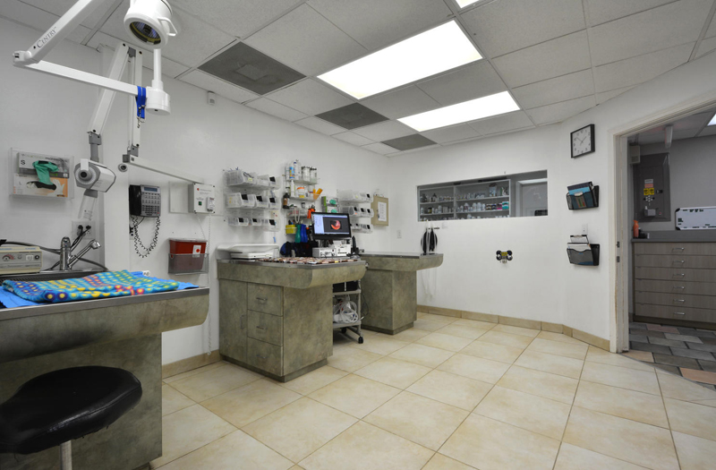 Spicewood Springs Animal Hospital facilities