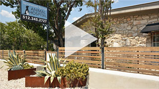 spicewood-animal-hospital-austin-vet-clinic-video